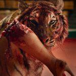 за кровушку, пластический грим и муляжи актёров на съёмках отвечала студия Петра Горшенина FXDG (FX Design Group).